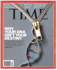epigenetics on time magazine
